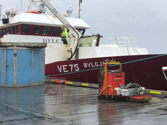 Mynd fyrir Bylgja VE 75 landaði mestum afla í Grindavíkurhöfn maí 2021