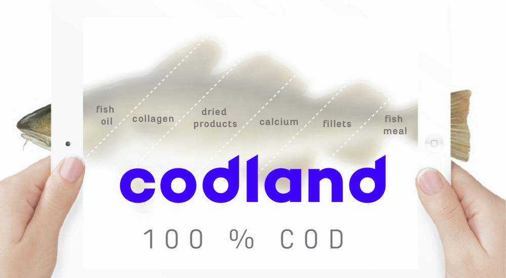 Codland hlýtur hvatningarverðlaun Sjávarútvegsráðstefnunnar og TM