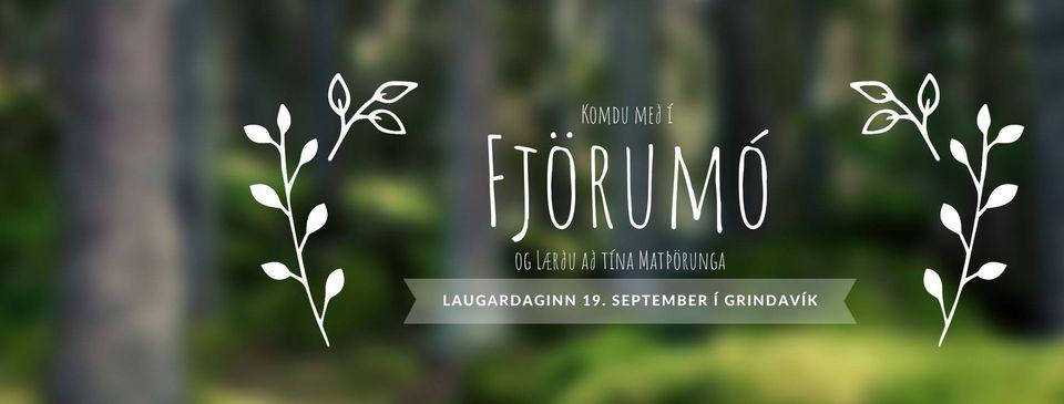 Mynd fyrir Fjörumó